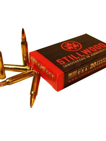 20rds .223