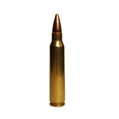 223 55 gr HP